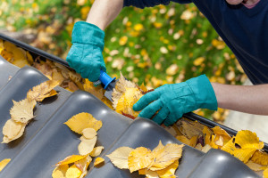 A man taking autumn leaves out of gutters